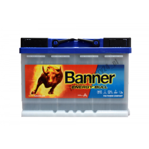 BANNER ENERGY BULL 956 01 80Ah